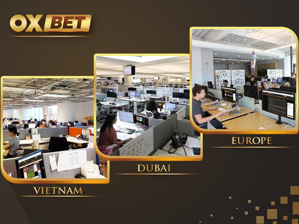 Văn phòng làm việc của nhà cái OXBET tại Việt Nam, Dubai (trụ sở chính) và Châu Âu